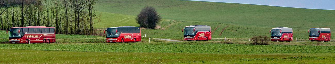 Die Busse von Spörlein Bus & Reisen Burgebrach - Busreisen